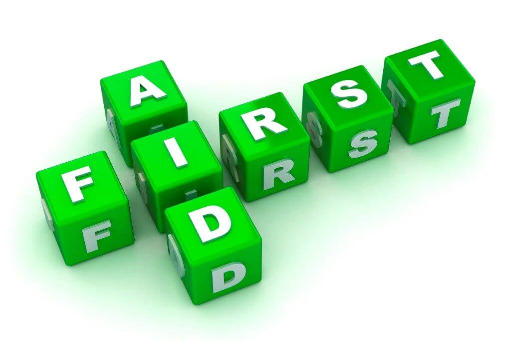 the words first and aid spelt using toy blocks with letters on them